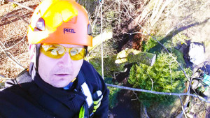 tree cutting Guildford