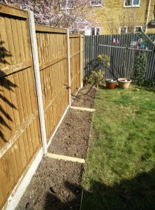 spring gardening Surrey and Hampshire