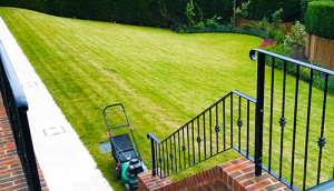Lawn mowing Guildford