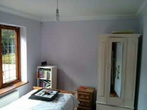 Painting and decorating Godalming
