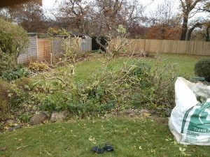 Garden cleaning Godalming