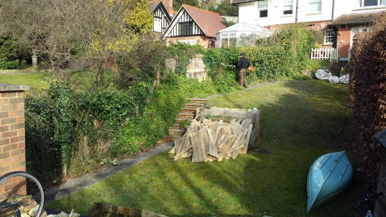 Building a fence, hedge trimming Guildford
