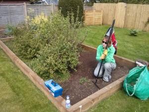 Weeding, garden maintenance Godalming